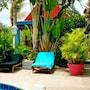 Caribbean Flower Apartments photo 12/22