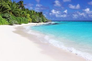 Thoddoo Beach View by Vista - Featured Image  - #0