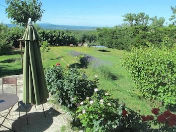 Loucardalines - Garden  - #0