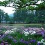 Hamabeno Ryouriyado Houraikan photo 36/41