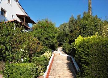 Fiorella Sea View - Property Grounds  - #0