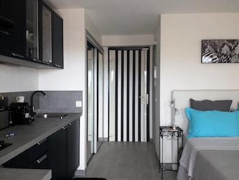 坎城超級中心嶄新開放式公寓飯店
