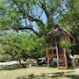 Port Olry Tree House Bungalow photo 2/4