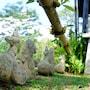 Mok Far Mont Ngo Resort photo 36/41