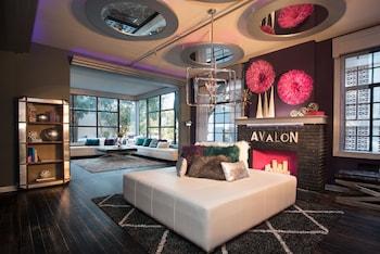 Avalon Hotel Downtown St. Petersburg