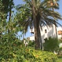 Antik Garden Hotel - All Inclusive photo 16/31