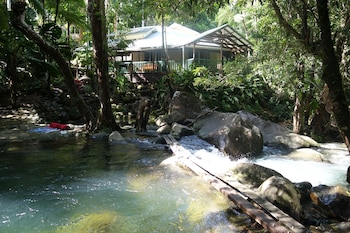 Daintree Secrets Rainforest Sanctuary - Property Grounds  - #0