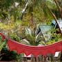Mairood Resort photo 13/17