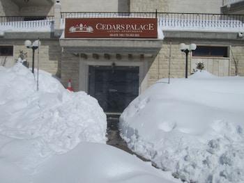 Cedars Palace