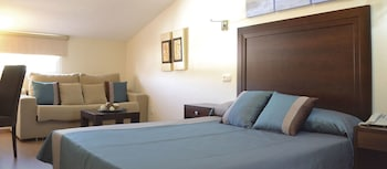 Hotel & Spa Plaza Arriate - Guestroom  - #0