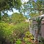 Tamarind Cottage photo 14/15