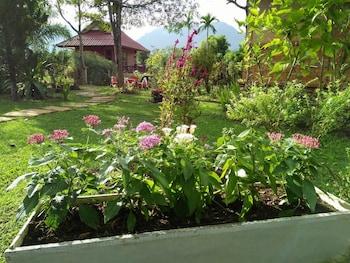 Maesai Doi View Resort - Garden  - #0