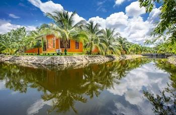 椰子渡假村