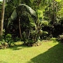 Kandy Shady Trees Villa photo 5/21