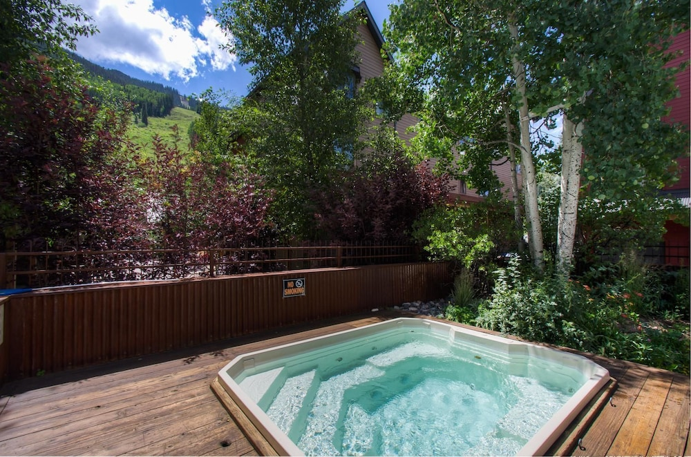 Lulu City 4C 2 Bedroom Condo By Accommodations in Telluride