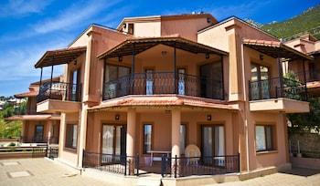 琥珀別墅飯店