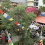 Hotel Himalayan Oasis photo 40/41