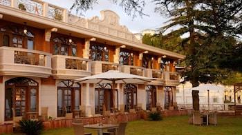 黃金棕櫚水療飯店