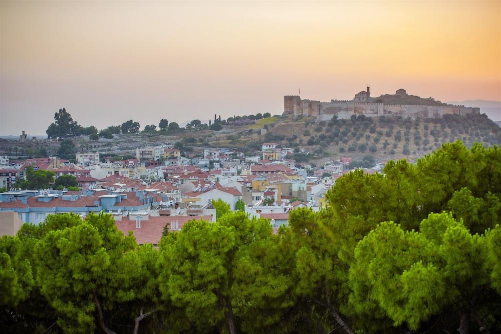 Ephesus Hillside