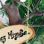 Chez Mimosa Home photo 4/32