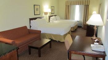 Holiday Inn Express Hotel & Suites Weslaco - Guestroom  - #0