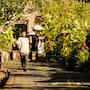 The Payogan Villa Resort & Spa photo 20/41