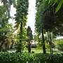 Pertiwi Resort & Spa photo 31/41