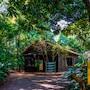 Bourbon Cataratas do Iguaçu Resort (Convention) photo 39/41