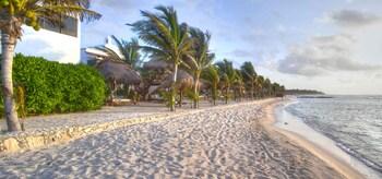 Hidden Beach Resort Au Naturel Club Gourmet All Inclusive - Beach  - #0