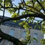 Hôtel Le Verger photo 28/32