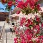 Hibiscus Suites - Gateway to Siesta Key photo 4/27