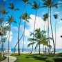 Vista Sol Punta Cana Beach Resort & Spa - All Inclusive photo 16/41