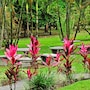 Arenal Country Inn photo 29/41