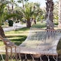Riadh Palms - Family and Couples Only photo 33/41