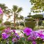 Seagull Beach Resort All Inclusive photo 30/41