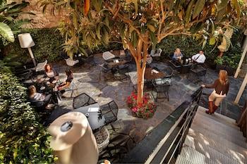 Olivia Plaza Hotel - Terrace/Patio  - #0