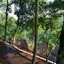 Natura Resort and Spa photo 2/41