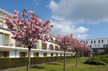 Hotel Vier Jahreszeiten Zingst - Garden  - #0