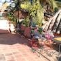 Amanhavis Hotel photo 9/41