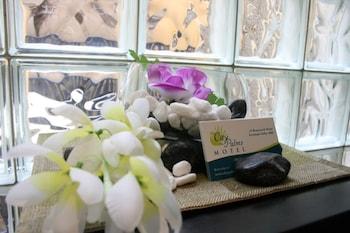 布里斯本棕櫚城市生態小屋旅館