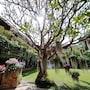 Holiday Garden Hotel & Resort Chiang Mai photo 36/40