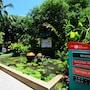 Patong Resort photo 27/41
