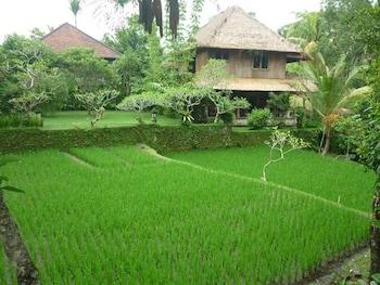 Ananda Cottages - Garden  - #0
