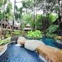 Khaolak Merlin Resort photo 9/41