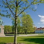 CABINN Odense Hotel photo 41/41