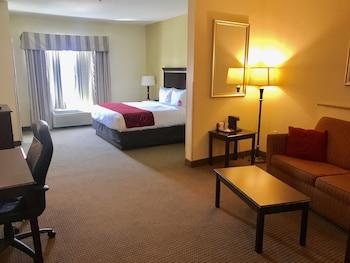 Comfort Suites University in Abilene, Texas