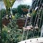 Hotel Alceste photo 3/12