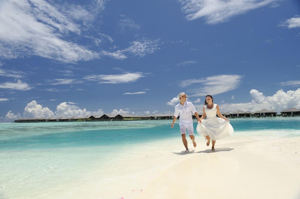 Paradise Island Resort Spa Maldives Maldives Inr 18186 Off