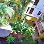Hotel Las Golondrinas photo 36/41