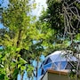 Chira Glamping Monteverde photo 4/41